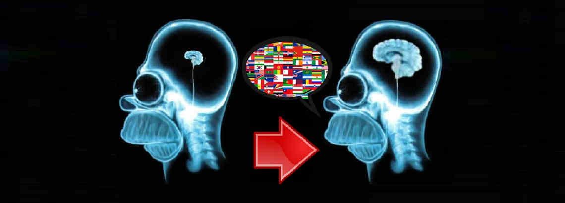 Aprender idiomas es saludable para el cerebro