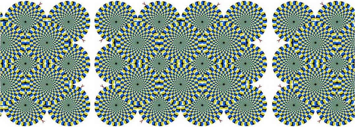 Como funciona la visión – Que ves cuando me ves