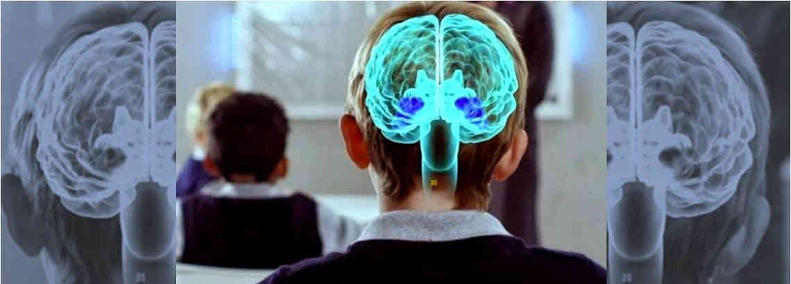 Neuroaprendizaje,¿cómo aprende nuestro cerebro?