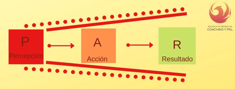 Modelo PAR – Percepción – Acción – Resultado