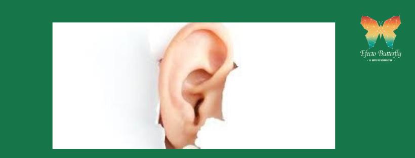 Sentido Común y escucha
