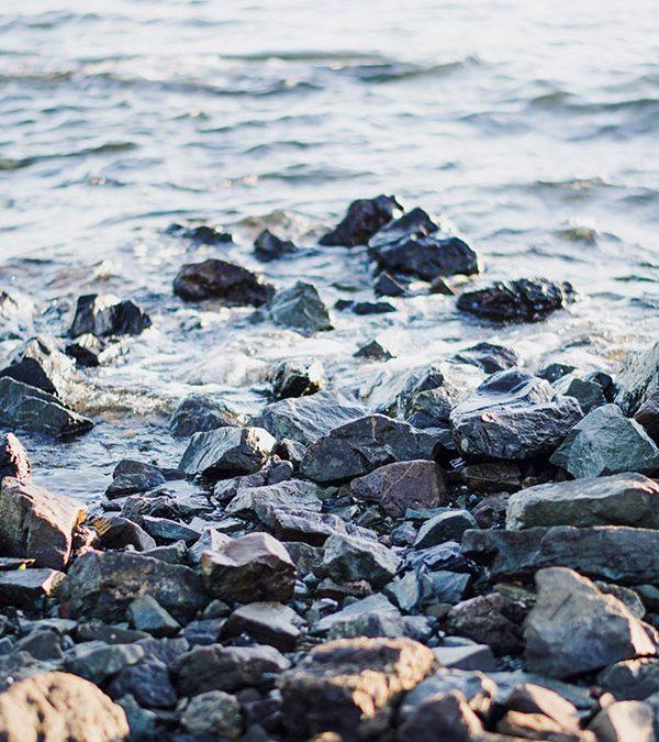 Fluir con el rio de la vida