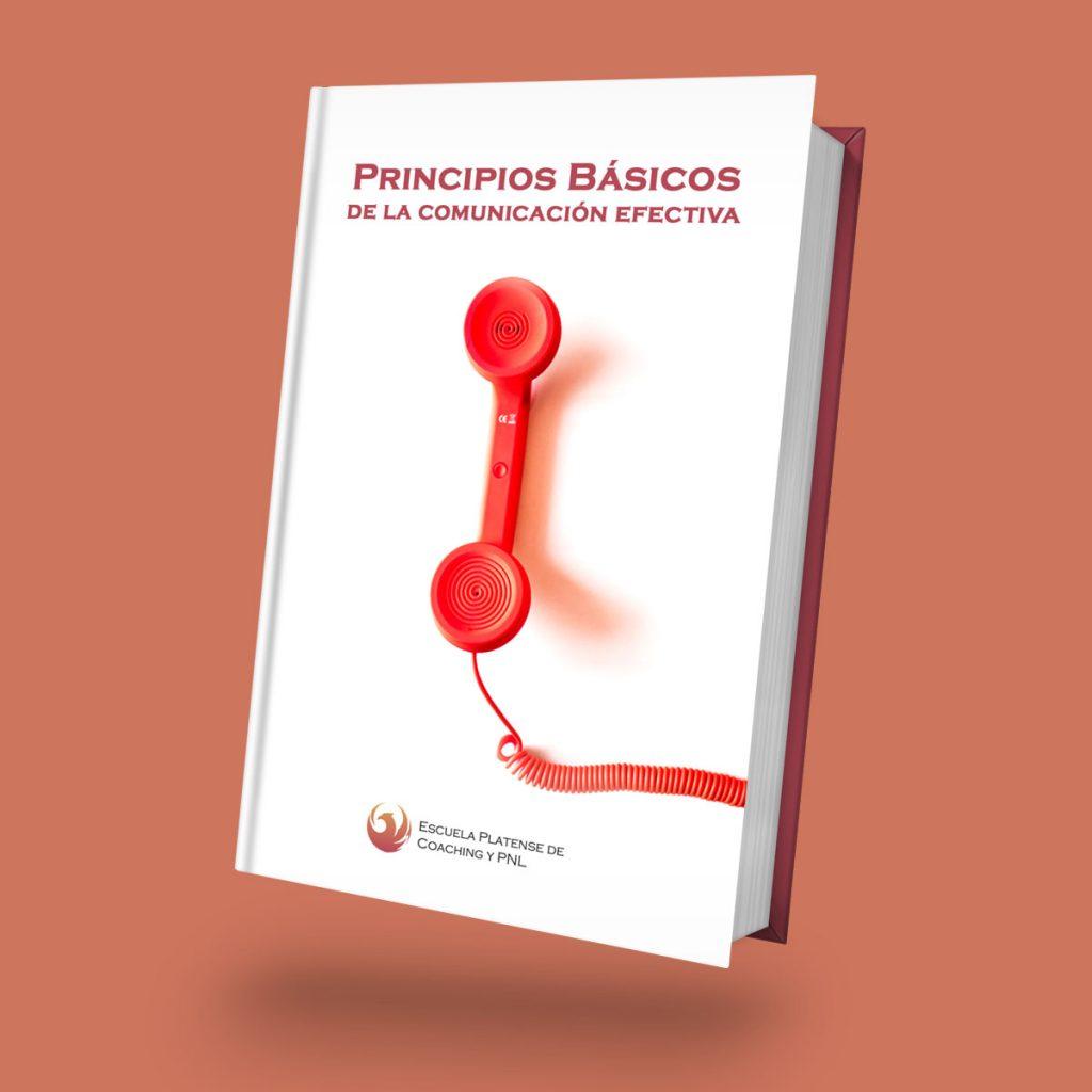 Ebook Gratuito: Principios Básicos de la Comunicación Efectiva