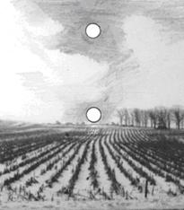 Como funcionan los procesos de formación de imágenes